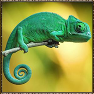 http://warlock.3dn.ru/MisteriumArch/Library/Mob/Animals/druiro.jpg