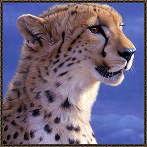 http://warlock.3dn.ru/MisteriumArch/Library/Mob/Animals/gepard.jpg