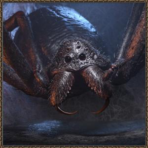 http://warlock.3dn.ru/MisteriumArch/Library/Mob/Animals/matka_peshh.pauka.jpg