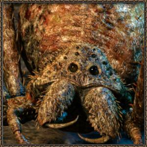 http://warlock.3dn.ru/MisteriumArch/Library/Mob/Animals/peshh-pauk-rabochij.jpg