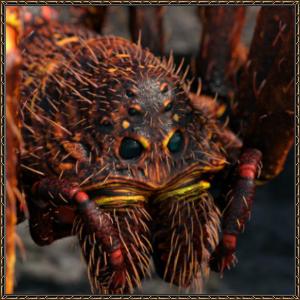 http://warlock.3dn.ru/MisteriumArch/Library/Mob/Animals/peshh-pauk-voin.jpg