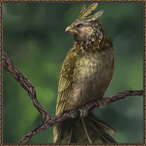 http://warlock.3dn.ru/MisteriumArch/Library/Mob/Animals/pjostraja_kljuvobojka.jpg