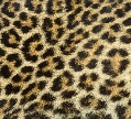 http://warlock.3dn.ru/MisteriumArch/Library/Resources/Fur/leopard.jpg